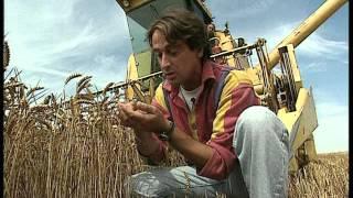 Documentaire C'est pas sorcier – Du blé au pain