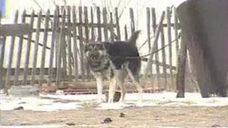 Documentaire Les secrets des essais nucléaires au Kazakhstan
