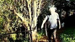 Documentaire Drogues et cerveau – Drogues psychédéliques