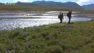 Documentaire Voyages au bout du Monde – Alaska, l'Arctic National Wildlife Refuge