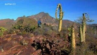 Documentaire Voyages au bout du monde – Au Mexique, la péninsule de Baja