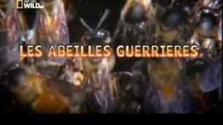 Documentaire Les abeilles guerrières