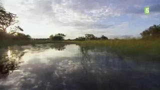Documentaire Botswana : la route de l'Eden