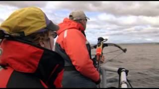 Documentaire Humanima, au rythme des grandes baleines