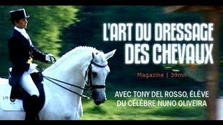 Documentaire Equitation : l'art de dresser les chevaux
