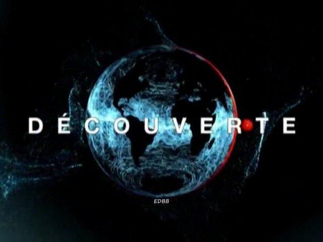 Documentaire Au coeur du corps humain – Affronter le danger