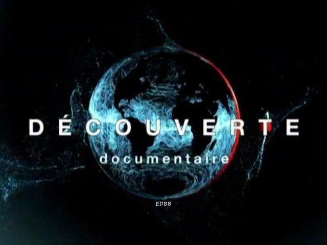 Documentaire Découverte – La nouvelle vie de bébé mammouth