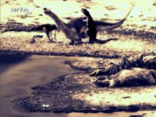 Documentaire Jurassic Fight Club – La guerre de l'eau