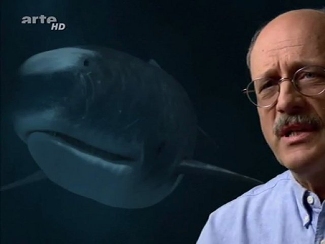 Documentaire Jurassic Fight Club – Le tueur des mers profondes