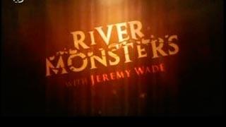Documentaire River Monsters – Salamandre japonaise