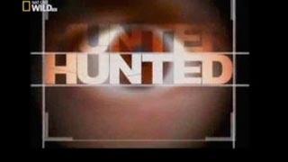 Documentaire Les experts du monde sauvage – L'ennemi silencieux
