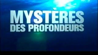 Documentaire Mystères des profondeurs – Tsunami et vagues scélérates