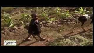 Documentaire Echappées belles – Cap Vert