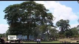 Documentaire Echappées belles – Madagascar : l'île rouge