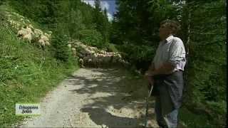 Documentaire Echappées belles – Rando dans les Alpes