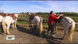 Documentaire Echappées belles – Languedoc-Roussillon