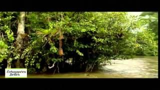 Documentaire Echappées belles – Guyane