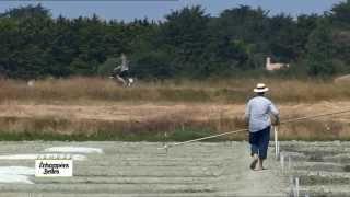 Documentaire Echappées belles – En longeant la côte vendéenne