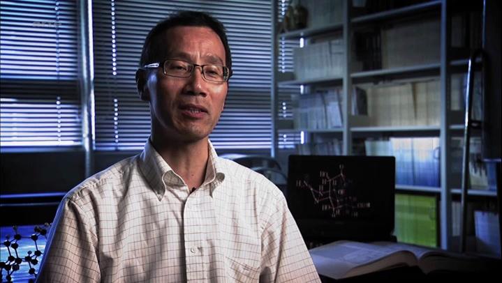 Documentaire Le fugu