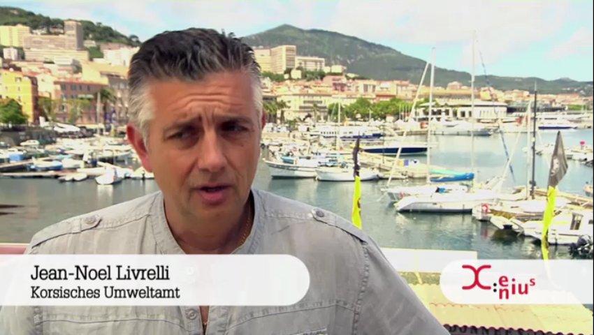 Documentaire Xenius – Peut-on encore manger du poisson ?