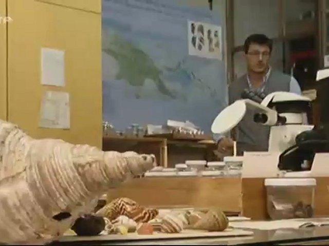Documentaire Xenius – Tout savoir sur les escargots