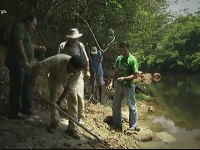Documentaire À la recherche du ver géant