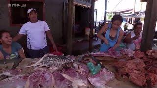 Documentaire Pérou : l'eldorado gastronomique ?