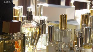 Documentaire Secrets de parfumeurs
