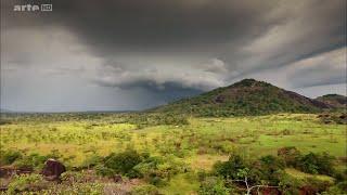 Documentaire Venezuela, chasseurs de mygales