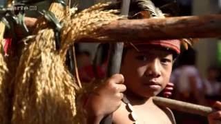 Documentaire Les rizières célèstes des Philippines