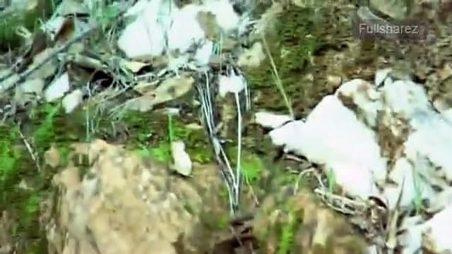 Documentaire Chasseurs d'ovnis – Le mystère des triangles