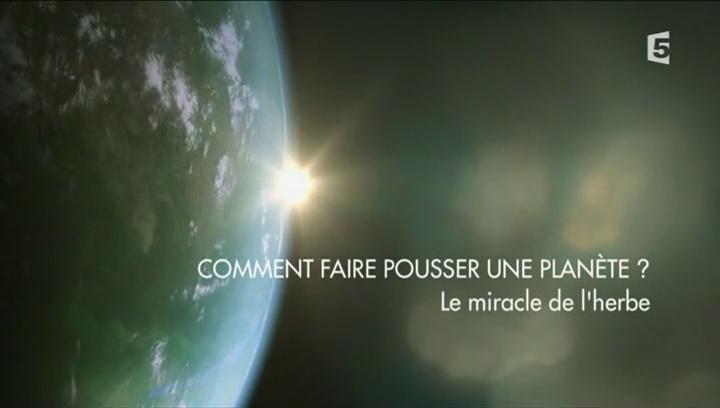 Documentaire Comment faire pousser une planète ? –  3 – Le miracle de l'herbe