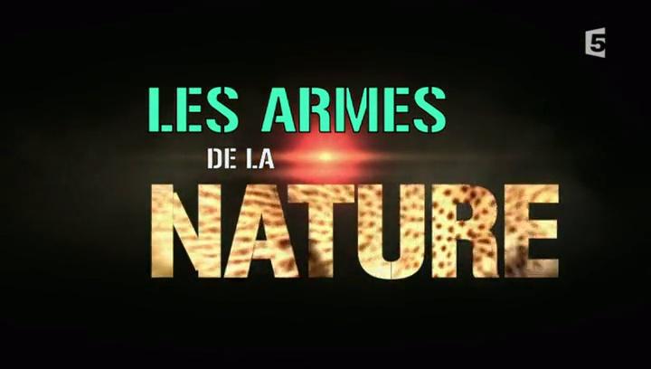 Documentaire Les armes de la nature – Becs & ongles
