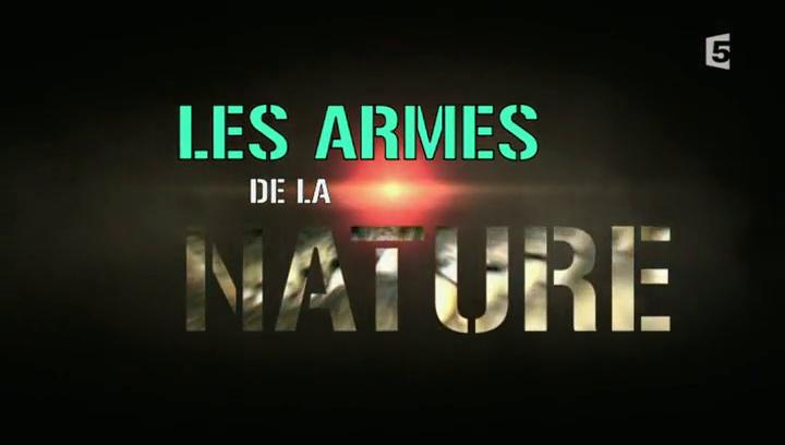 Documentaire Les armes de la nature – Le bruit & la fureur