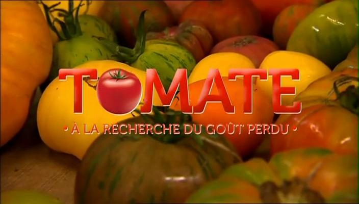 Documentaire Tomate : à la recherche du goût perdu