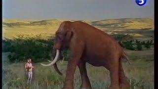 Documentaire A l'aube des temps – Les mammouths