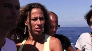 Documentaire Pelagos, nos voisins les cétacés