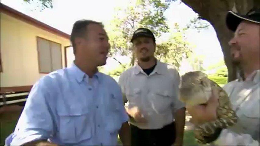 Documentaire Chasseurs de pythons : Lézards d'Autralie