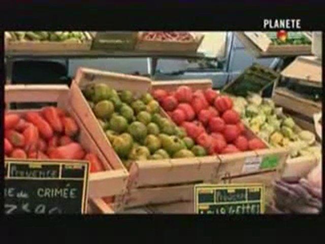 Documentaire Les tomates voient rouge