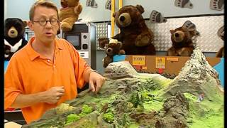 Documentaire C'est pas sorcier – Les ours
