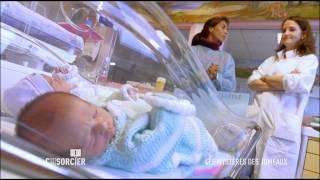 Documentaire C'est pas sorcier – Les mystères des jumeaux