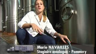 Documentaire C'est pas sorcier – Champagne, les sorciers se font mousser