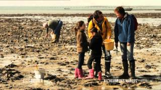 Documentaire C'est pas Sorcier – A l'heure des marées