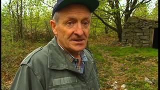 Documentaire C'est pas sorcier – Pierre, les sorciers font carrière