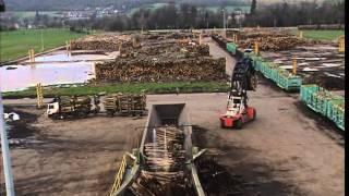 Documentaire C'est pas sorcier – Papier: il n'a pas toujours la fibre écologique