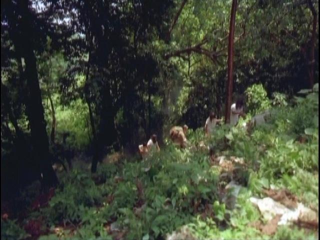 Documentaire Le mystère des Mayas