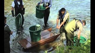 Documentaire Destination pêche – L'Helpe de mineure en majeure