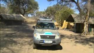 Documentaire Les lycaons, hors-la-loi de la savane au Botswana