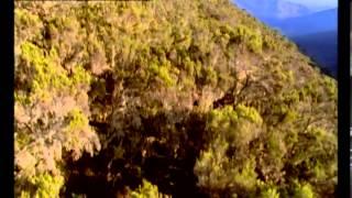 Documentaire Les nuits de la hyène en Ethiopie