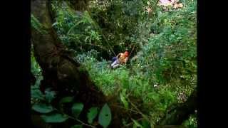Documentaire Le voyageur des cimes – Costa Rica